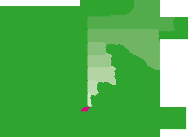 vdt_graph